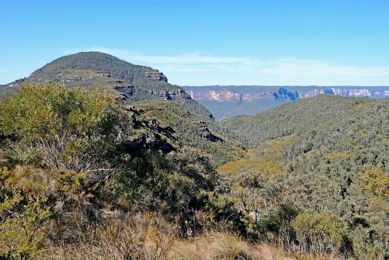 Πανοραμική άποψη για το Εθνικό Πάρκο των Γαλάζιων Βουνών, Katoomba, Νέα Νότια Ουαλία, Αυστραλία στοκ εικόνα με δικαίωμα ελεύθερης χρήσης