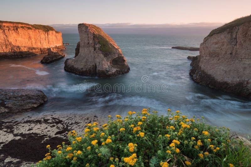 Πανοραμική άποψη πέρα από την παραλία δοντιών καρχαριών όρμων πτερυγίων καρχαριών Ντάβενπορτ, κομητεία Santa Cruz, Καλιφόρνια, ΗΠ στοκ εικόνα με δικαίωμα ελεύθερης χρήσης
