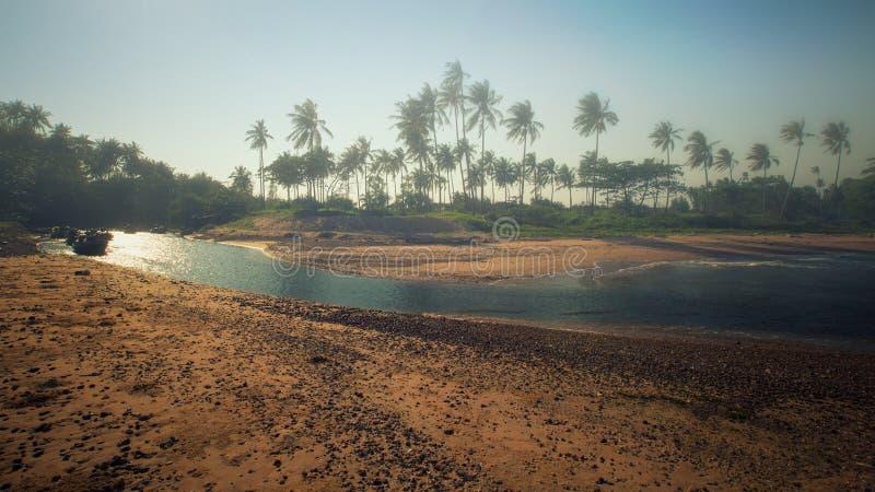 Πανοραμική άποψη της τροπικής παραλίας με τους φοίνικες καρύδων Koh Sa στοκ εικόνα με δικαίωμα ελεύθερης χρήσης