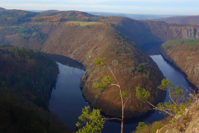 Πανοραμική άποψη του φαραγγιού ποταμών με το σκοτεινό νερό και τη ζωηρόχρωμη δασική πεταλοειδή κάμψη φθινοπώρου, ποταμός Vltava,  στοκ εικόνα
