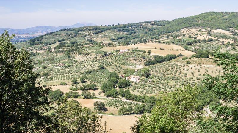 Πανοραμική άποψη του όμορφου χαρακτηριστικού ιταλικού τοπίου τομέων στοκ φωτογραφία