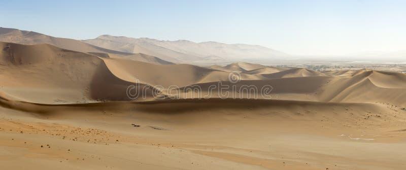 Πανοραμική άποψη των άμμος-αμμόλοφων στην επιφύλαξη φύσης Sossusvlei στη Ναμίμπια Αυτοί οι κοκκινωποί αμμόλοφοι στο κύριο αλατισμ στοκ εικόνα με δικαίωμα ελεύθερης χρήσης
