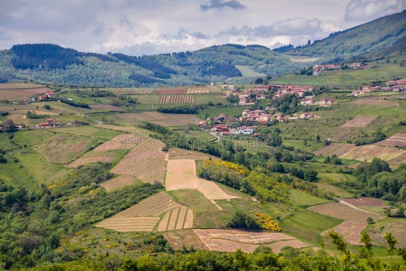 Πανοραμική άποψη των αμπελώνων που περιβάλλουν το γραφικό γαλλικό χωριό Oingt στο Beaujolais δρόμο κρασιού στοκ φωτογραφίες με δικαίωμα ελεύθερης χρήσης