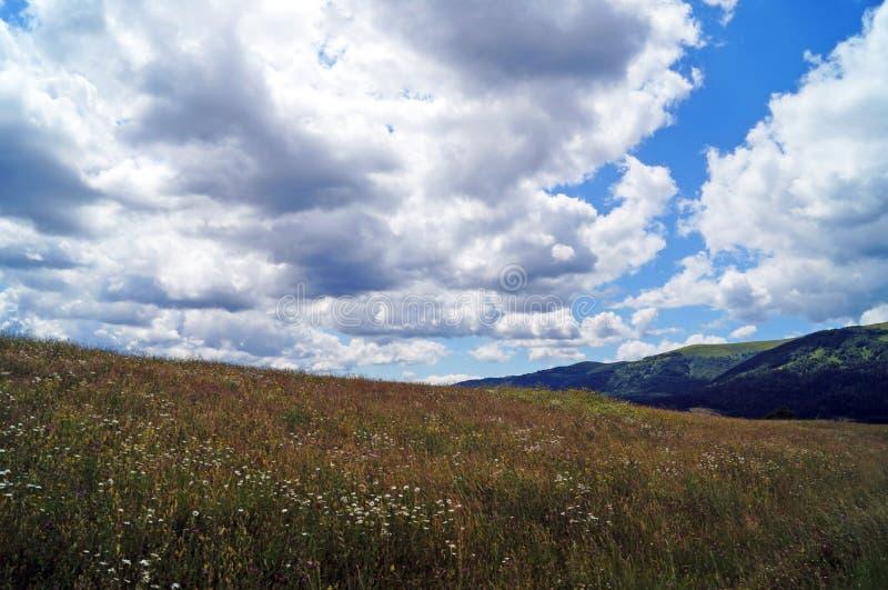 Πανοραμική άποψη των Καρπάθιων βουνών, των πράσινων δασών και των ανθίζοντας λιβαδιών στοκ φωτογραφίες με δικαίωμα ελεύθερης χρήσης