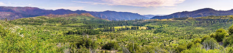 Πανοραμική άποψη των όμορφων πράσινων λιβαδιών και των δασών στο εθνικό πάρκο Yosemite, οροσειρά βουνά της Νεβάδας, Καλιφόρνια στοκ φωτογραφίες