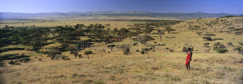Πανοραμική άποψη ως πολεμιστή Masai στο κόκκινο τοπίο έρευνας της συντήρησης Lewa, Κένυα, Αφρική με το όρος Κένυα στοκ φωτογραφία με δικαίωμα ελεύθερης χρήσης