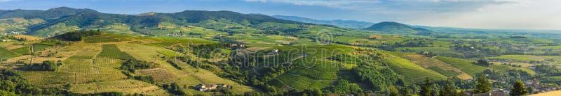 Πανοραμική άποψη Beaujolais του εδάφους με τα φω'τα πρωινού, Γαλλία στοκ φωτογραφία με δικαίωμα ελεύθερης χρήσης