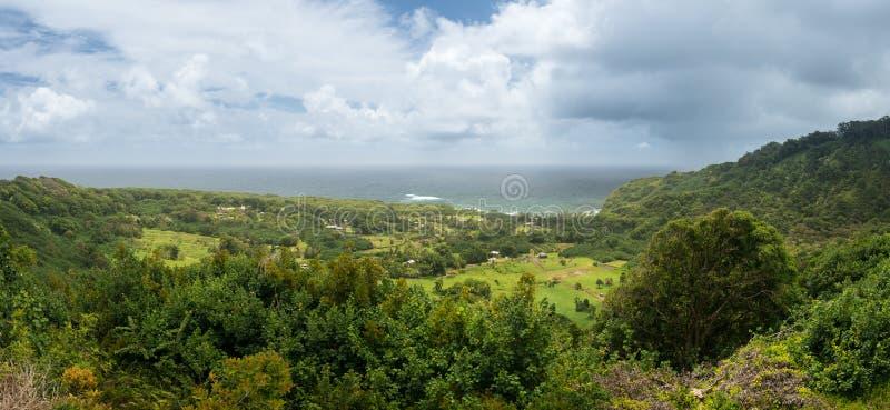 Πανοραμική άποψη taro των τομέων κοντά σε Keanae σε Maui στοκ φωτογραφίες με δικαίωμα ελεύθερης χρήσης