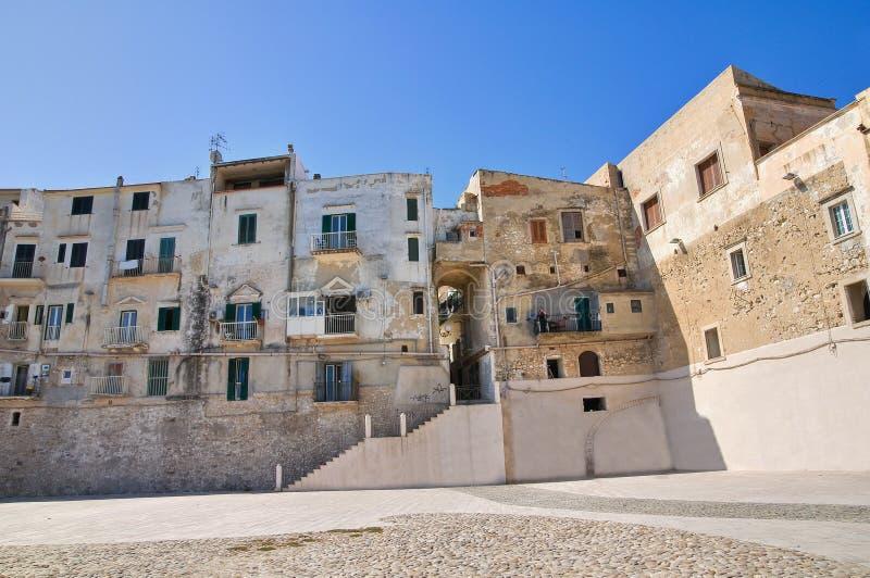 Πανοραμική άποψη Vieste. Πούλια. Ιταλία. στοκ φωτογραφία με δικαίωμα ελεύθερης χρήσης