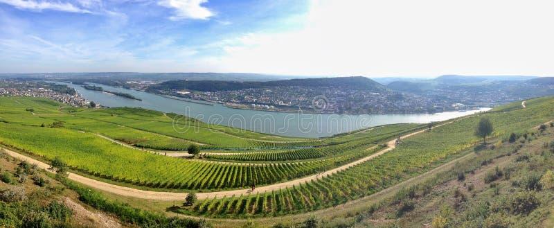 Πανοραμική περιοχή Rheingau άποψης στοκ εικόνα με δικαίωμα ελεύθερης χρήσης