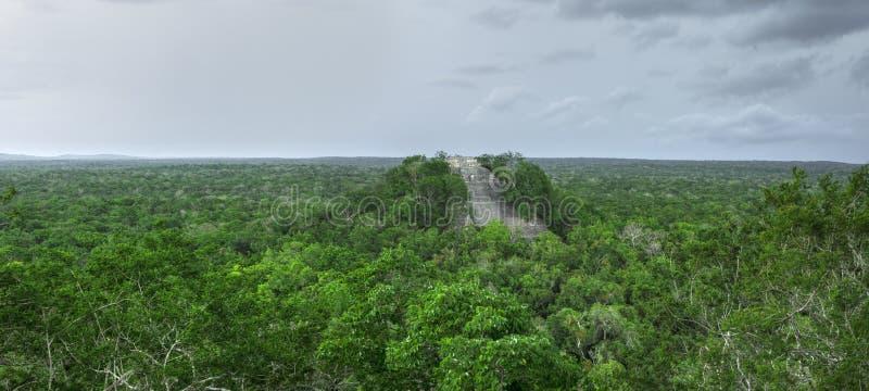 Πανοραμικός ναός 1 της Maya σε Calakmul, Campeche στοκ φωτογραφία