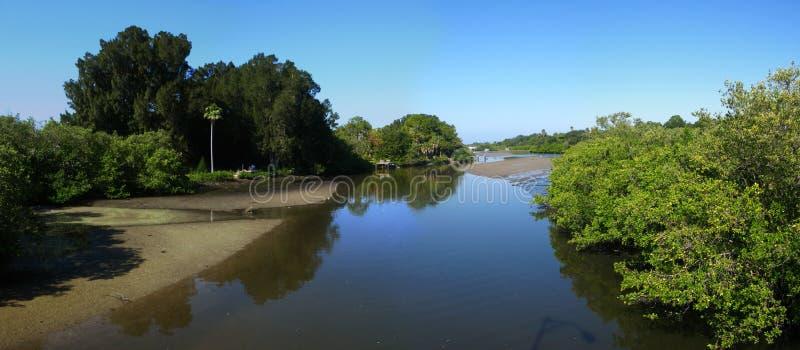 πανοραμικός ποταμός παλιρροιακός στοκ φωτογραφία με δικαίωμα ελεύθερης χρήσης