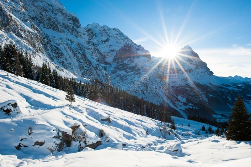 Πανοραμικό τοπίο επάνω από Grindelwald στοκ εικόνα