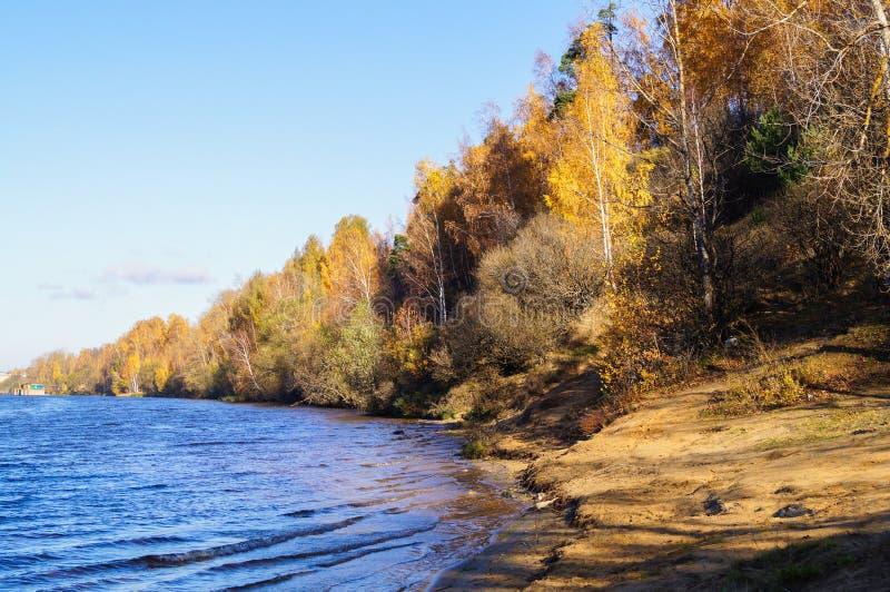 Πανοραμικό τοπίο με τη δασική λίμνη το φθινόπωρο στοκ φωτογραφία με δικαίωμα ελεύθερης χρήσης