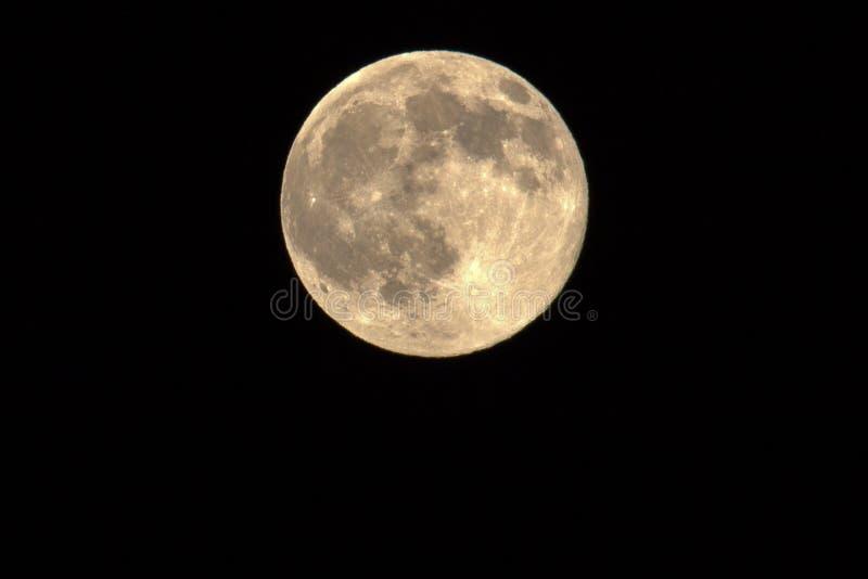 Πανσέληνος, φεγγάρι μελιού στοκ εικόνα με δικαίωμα ελεύθερης χρήσης