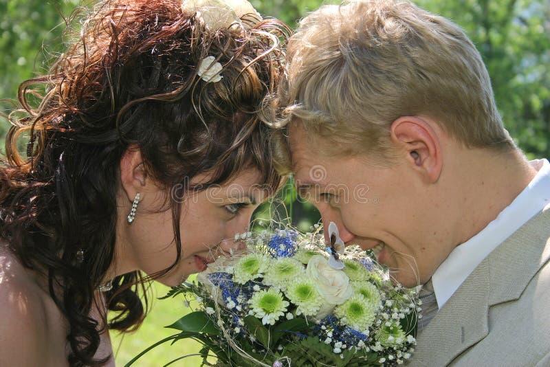 Download παντρεμένος στοκ εικόνα. εικόνα από παντρεμένος, αυξήθηκε - 385287