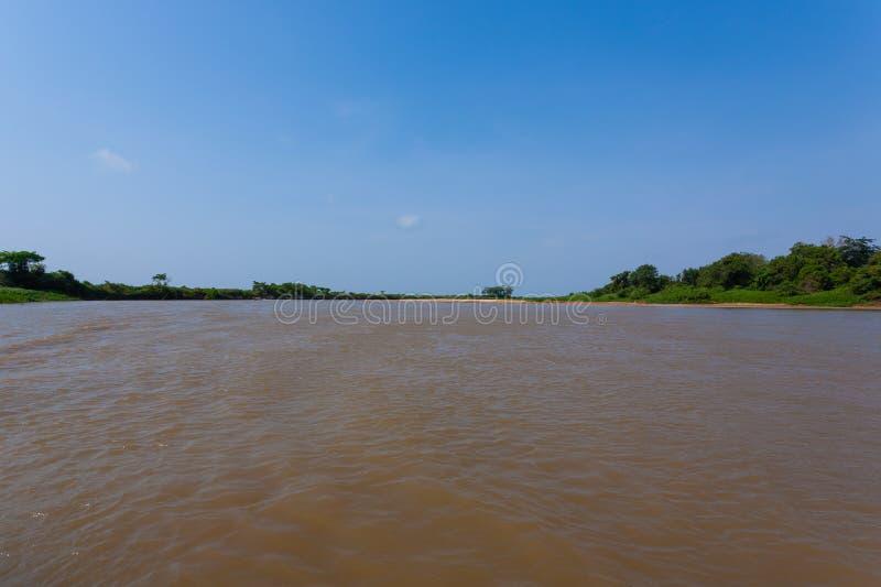 Πανόραμα από Pantanal, βραζιλιάνα περιοχή υγρότοπου στοκ φωτογραφία με δικαίωμα ελεύθερης χρήσης