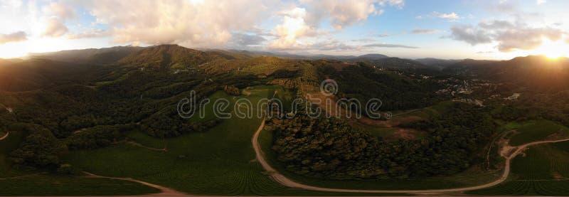 Πανόραμα 360 βαθμός στον αέρα Όμορφο δασικό πανόραμα με τη φυτεία τσαγιού και το φωτεινό ήλιο στοκ φωτογραφία με δικαίωμα ελεύθερης χρήσης
