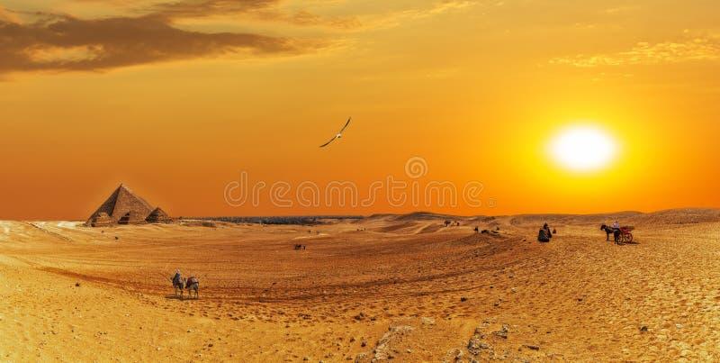 Πανόραμα ερήμων Giza με τις μεγάλες πυραμίδες και bedouins στοκ εικόνες