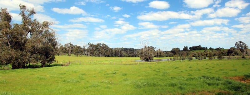 Πανόραμα της αυστραλιανής αγροτικής σκηνής στοκ εικόνα