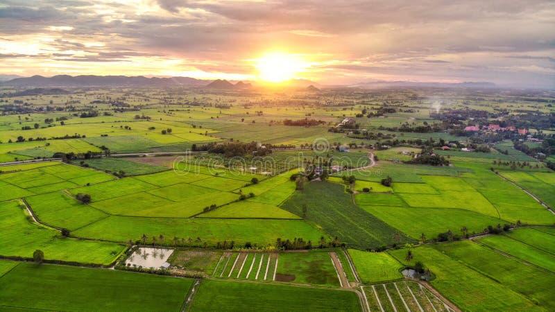 Πανόραμα της εναέριας άποψης στο ηλιοβασίλεμα πέρα από το βουνό στους τομείς ρυζιού στοκ φωτογραφία με δικαίωμα ελεύθερης χρήσης