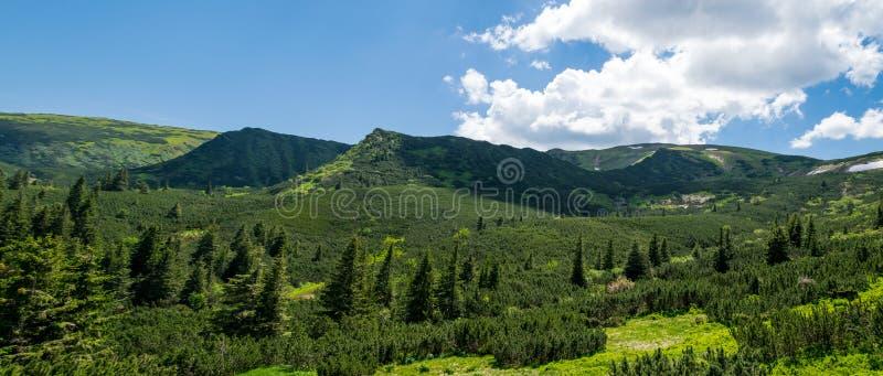 Πανόραμα της Καρπάθιας σειράς βουνών στοκ εικόνες