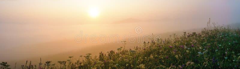 Πανόραμα της ομίχλης θερινού πρωινού στους λόφους στοκ φωτογραφίες