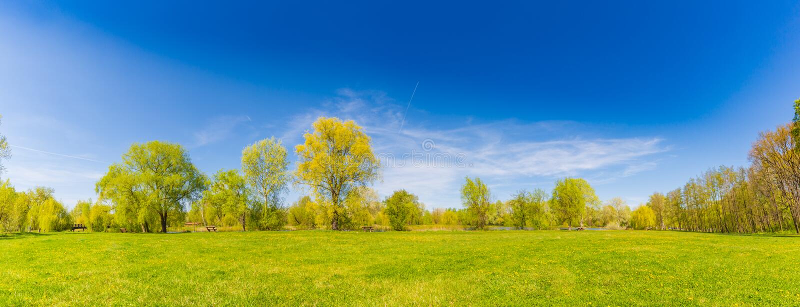 Πανόραμα τοπίων θερινής άνοιξης Πράσινα δέντρα και πράσινη χλόη κάτω από το μπλε ουρανό στοκ εικόνες