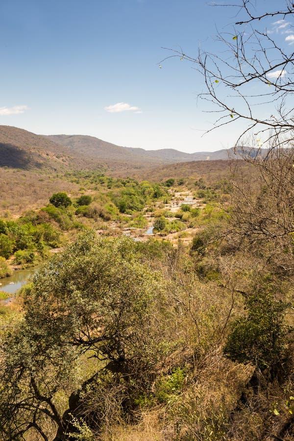 Πανόραμα του τοπίου σαβανών με τον ποταμό στη Σουαζιλάνδη στοκ φωτογραφία με δικαίωμα ελεύθερης χρήσης