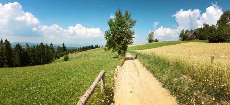 Πανόραμα των βουνών gorce στην Πολωνία στοκ εικόνα με δικαίωμα ελεύθερης χρήσης