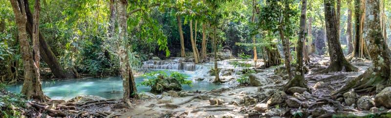 Πανόραμα των γυμνών ριζών και μια σειρά όμορφων κοντών καταρρακτών στο πυκνό δάσος του εθνικού πάρκου Erawan στην Ταϊλάνδη στοκ φωτογραφία