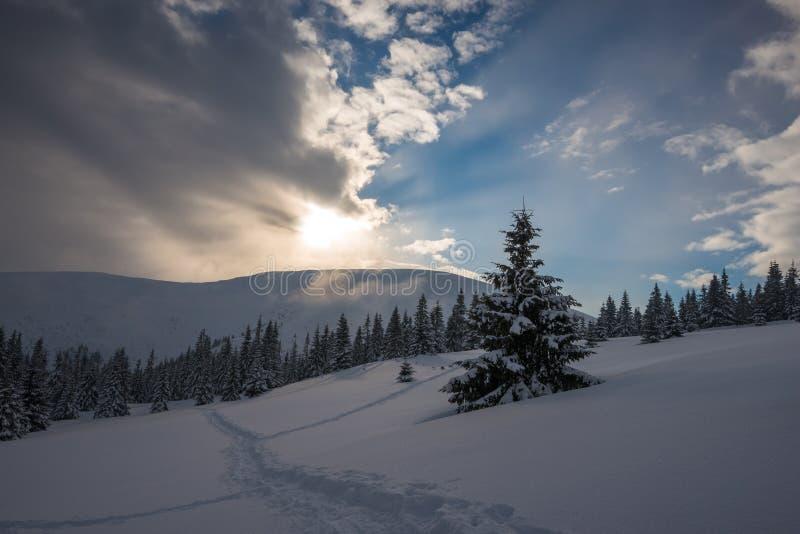 Πανόραμα των χειμερινών βουνών κατά τη διάρκεια του ηλιοβασιλέματος στοκ εικόνες