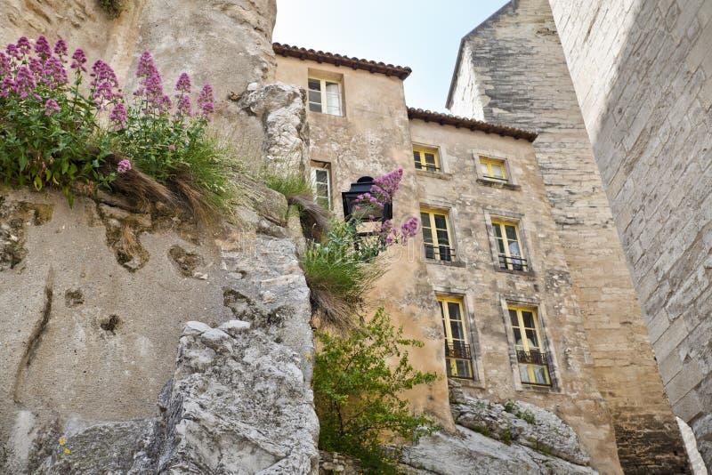 παπάδες παλατιών στοκ φωτογραφία με δικαίωμα ελεύθερης χρήσης