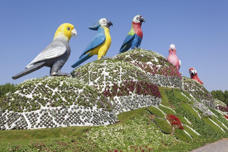 Παπαγάλοι στον κήπο θαύματος στο Ντουμπάι στοκ φωτογραφία με δικαίωμα ελεύθερης χρήσης