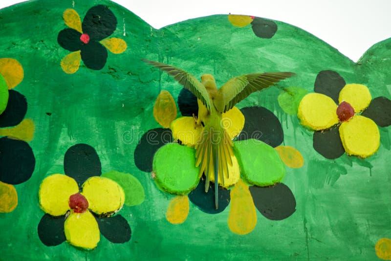 Παπαγάλος που αρπάζει το λουλούδι στοκ εικόνα