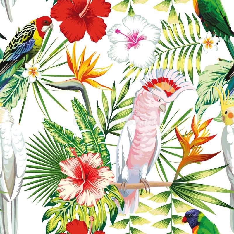 Παπαγάλων τροπικό άσπρο backgr σχεδίων λουλουδιών και φύλλων άνευ ραφής απεικόνιση αποθεμάτων