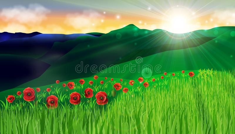 Παπαρουνών κόκκινοι τομείς χλόης λουλουδιών πράσινοι που καταπλήσσουν το υπόβαθρο ειρήνης αρμονίας τοπίων ηλιοβασιλέματος διανυσματική απεικόνιση