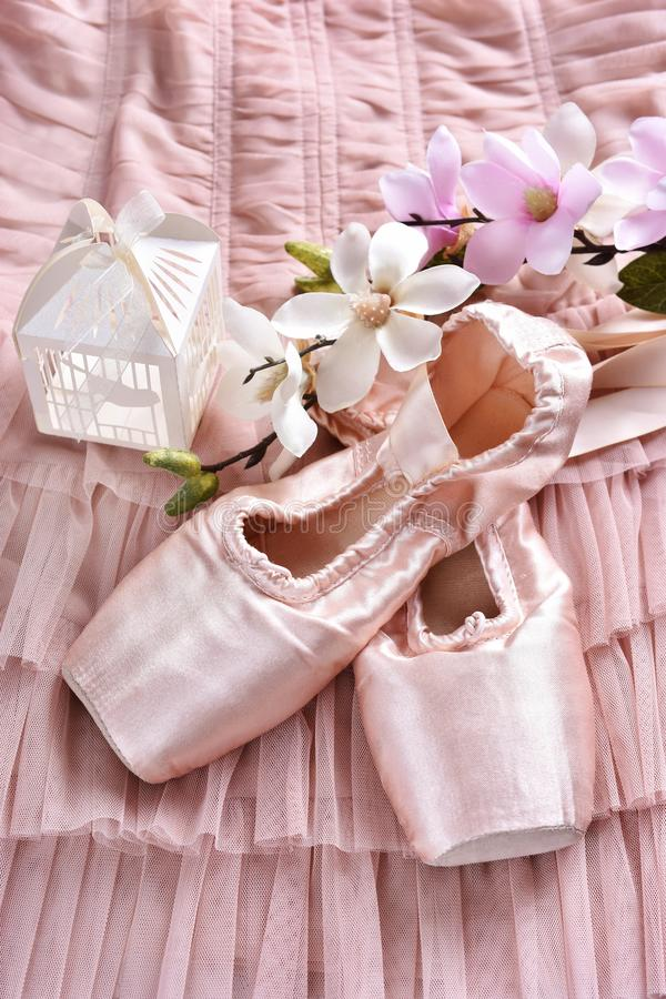 Παπούτσια μπαλέτου pointe που βρίσκονται στο φόρεμα του Tulle στοκ φωτογραφίες