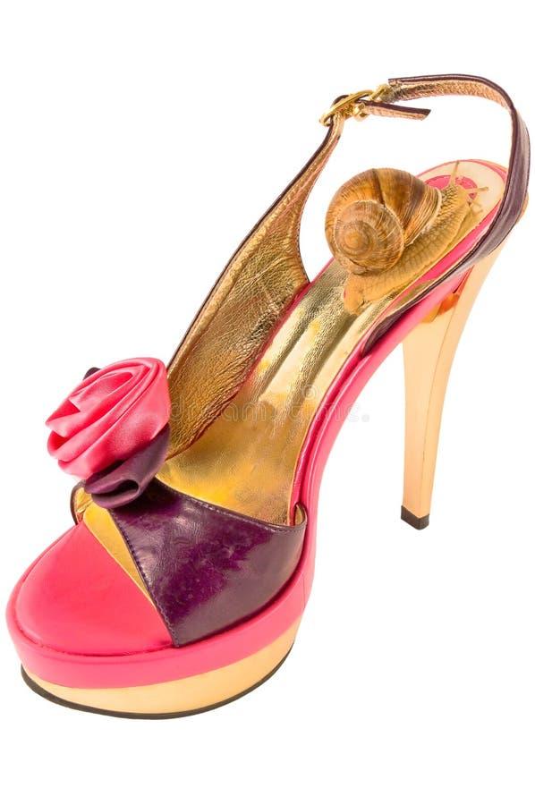 παπούτσια wovan στοκ εικόνες