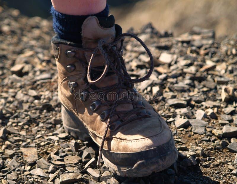 Παπούτσι πεζοπορίας στοκ φωτογραφία