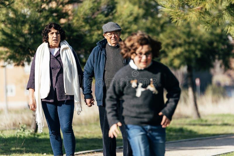 Παππούδες και γιαγιάδες που φροντίζουν για τον εγγονό τους στοκ εικόνα