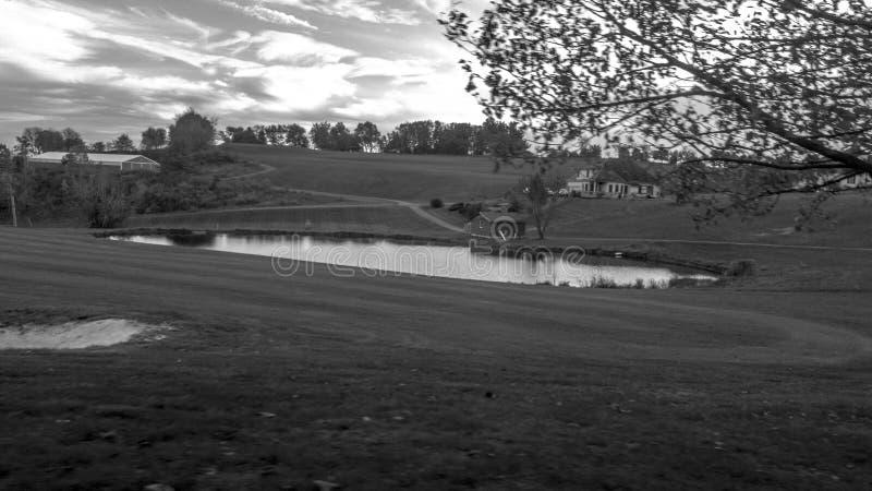 Παράβλεψη της λίμνης στοκ φωτογραφία με δικαίωμα ελεύθερης χρήσης