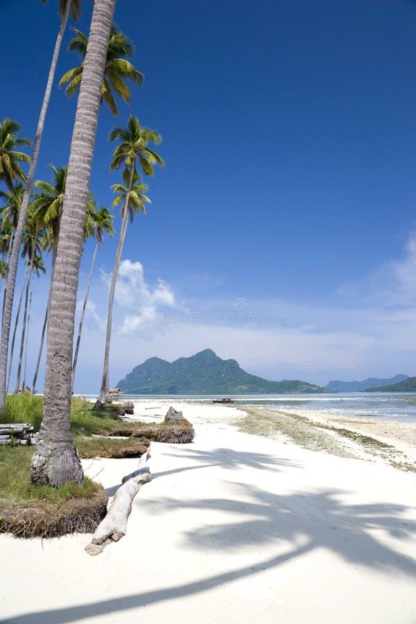 παράδεισος νησιών τροπικό& στοκ εικόνα με δικαίωμα ελεύθερης χρήσης