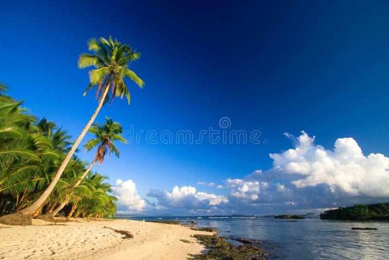 παράδεισος παραλιών τροπ στοκ φωτογραφία με δικαίωμα ελεύθερης χρήσης