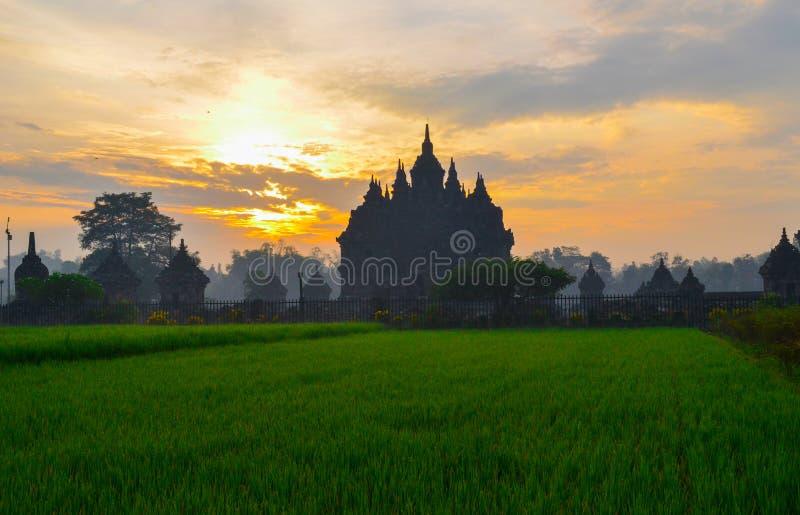 Παράδεισος Hiden στο ναό Plaosan στοκ εικόνα