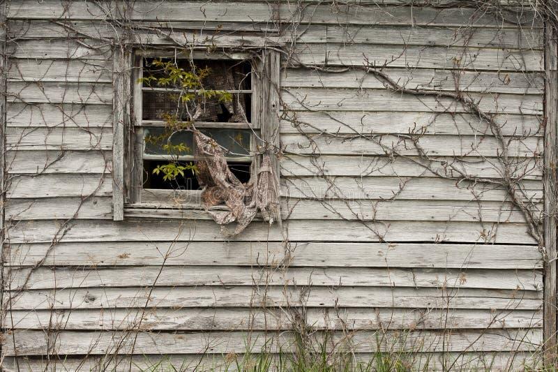 παράθυρο αμπέλων στοκ εικόνα με δικαίωμα ελεύθερης χρήσης
