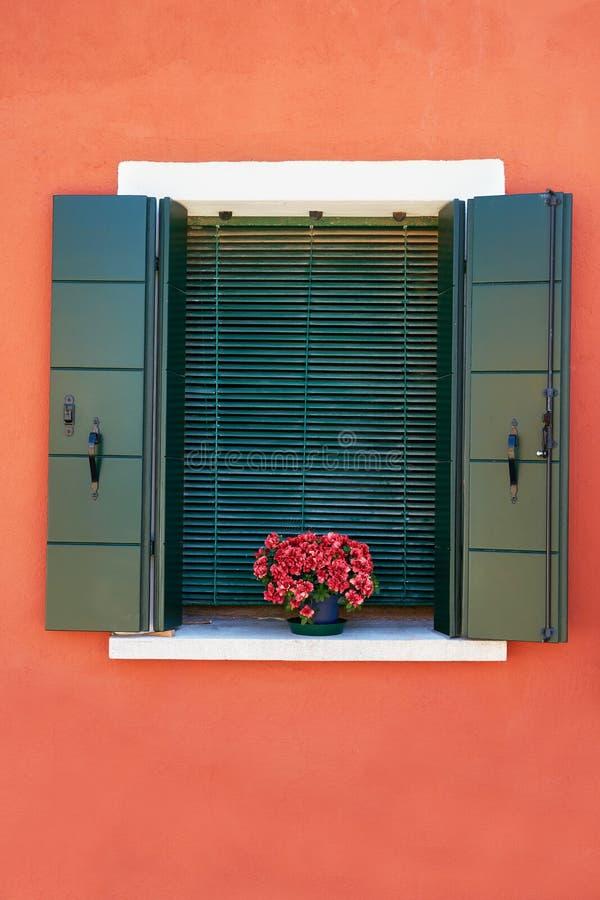 Παράθυρο με τα πράσινα παραθυρόφυλλα και τα κόκκινα λουλούδια στο δοχείο Παραδοσιακοί ζωηρόχρωμοι τοίχοι και παράθυρα Ιταλία Βενε στοκ φωτογραφία