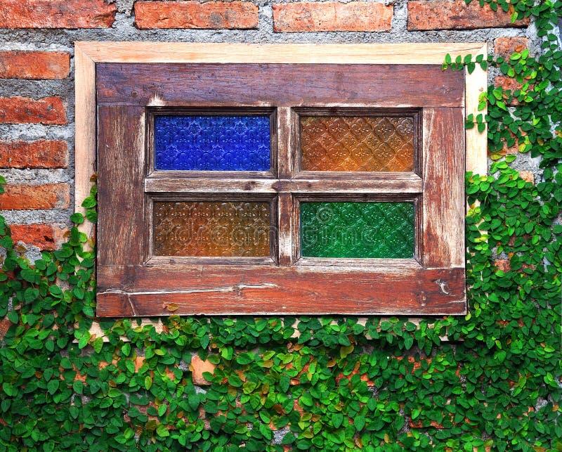 παράθυρο τοίχων πράσινων φ&upsil στοκ εικόνα με δικαίωμα ελεύθερης χρήσης