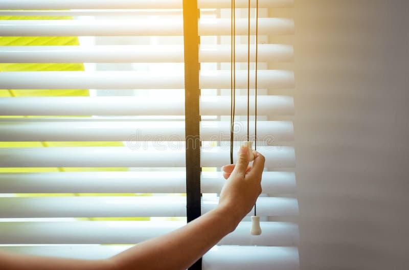Παράθυρο τυφλών ανοίγματος γυναικών χεριών στο καθιστικό για να πάρει το φως του ήλιου στοκ εικόνες