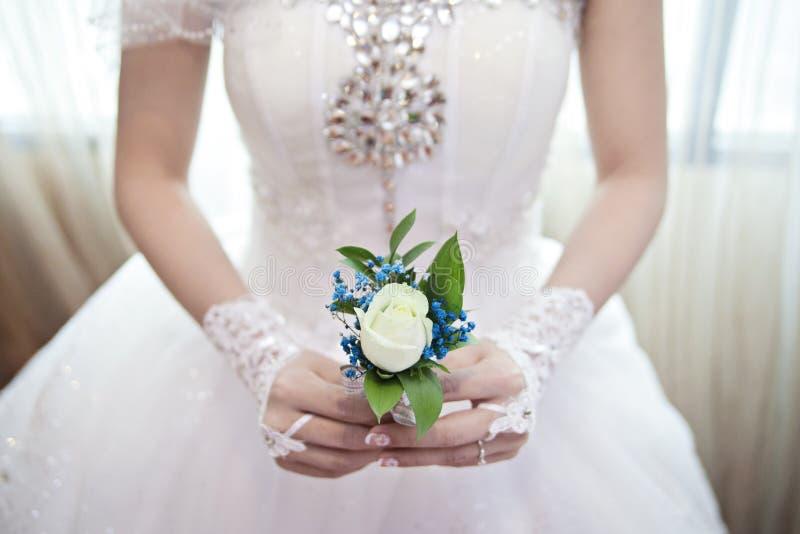 Παράνυμφοι γαμήλιων φίλων Vanasa στοκ εικόνα